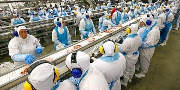 Vagas de Emprego na JBS: Trabalhe na Indústria de Alimentos