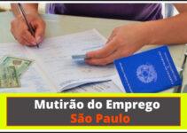 Mutirão do Emprego de São Paulo: Veja Como Participar